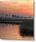 Dawn On The Bayou Metal Print