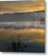 Dawns Light Metal Print