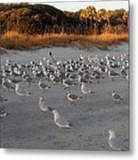 Day At The Beach Metal Print