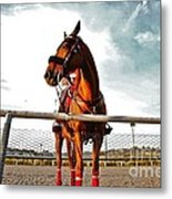 Day At The Track Metal Print