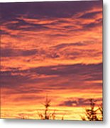 Day Awakening Metal Print