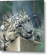 Day Dream Metal Print