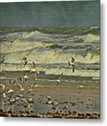 Day For The Birds Metal Print