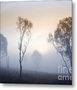 Cannock Chase Day Is Dawning Metal Print