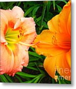 Day Lilies As Happy Friends Metal Print