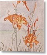 Day Lililes Metal Print