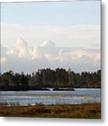 Day Of Beauty Metal Print