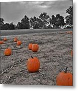 Day Of The Pumpkins Metal Print by Thomas  MacPherson Jr