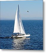 Day On The Bay Metal Print