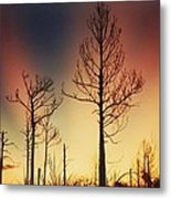 Daybreak After Hurricane Andrew Metal Print