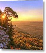 Daybreak On Mt. Magazine - Arkansas - Cedar Tree - Autumn Metal Print