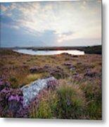 Daybreak Over Connemara Bog Metal Print