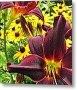 Daylilies And Rudbeckia Metal Print