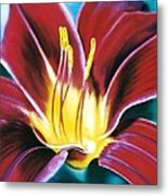 Daylilly Georgia Style Metal Print