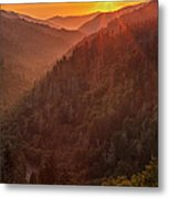 Day's Last Light Metal Print by Andrew Soundarajan
