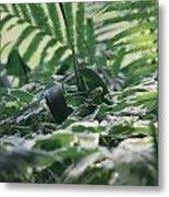 Dazzle Camouflage Patterns In The Garden Metal Print