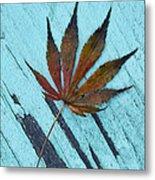 Dazzling Japanese Maple Leaf Metal Print