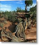Dead Horse Point Tree 1 Metal Print