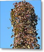 Dead Tall Stump Covered With New Leaves Metal Print