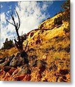 Dead Tree Against The Blue Sky Metal Print by Jeff Swan