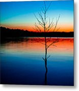 Dead Tree Beauty At Sunset Over Table Rock Lake Metal Print