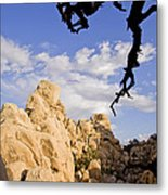Dead Tree Limb Hanging Over Rocky Landscape In The Mojave Desert Metal Print