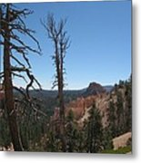 Dead Trees At Bryce Canyon Metal Print