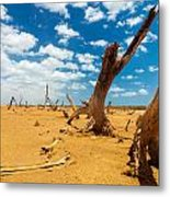 Dead Trees In A Desert Wasteland Metal Print