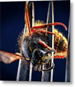 Dead Wasp On A Fork Metal Print