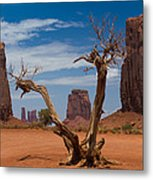Dead Wood In Monument Valley Metal Print