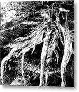 Deadtree Metal Print