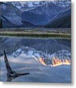 Deadwood At Beauty Creek Sunrise Metal Print