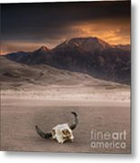 Death In The Desert Metal Print