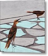 Death Valley Birds Metal Print