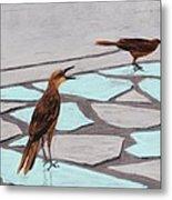 Death Valley Birds Metal Print by Anastasiya Malakhova