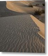 Death Valley Mesquite Flat Sand Dunes Img 0181 Metal Print