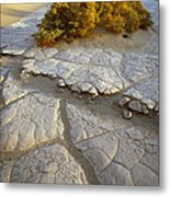 Death Valley Mudflat Metal Print