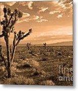 Death Valley Solitude Metal Print