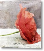 Decor Poppy Red Metal Print