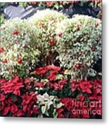 Decorated For Christmas Metal Print