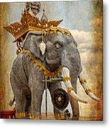 Decorative Elephant Metal Print by Adrian Evans
