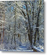 Deep Freeze Metal Print
