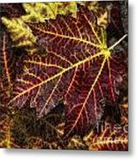 Deep Red Metal Print