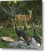 Deer And Wild Turkeys Metal Print