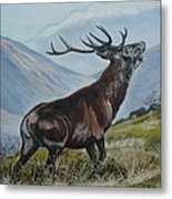 Deer Country Metal Print