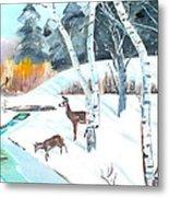 Deer Creek In Winter Metal Print