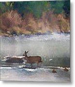 Deer Crossing Stream Panoramic Metal Print