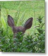 Deer Ear In A Mint Patch Metal Print