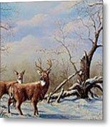 Deer In Crete Metal Print