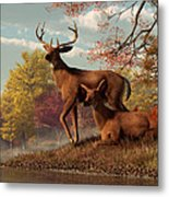 Deer On An Autumn Lakeshore  Metal Print